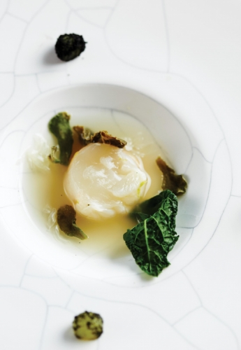 RAW NEW ZEALAND SCAMPI WITH TEA-INFUSED MELON AND PICKLED OOLONG TEA LEAVES