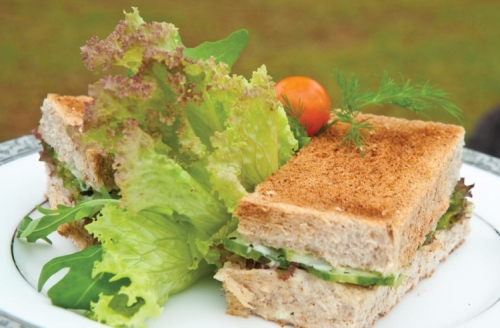 Peppermint Tea Cucumber Kurakkan Bread Sandwich