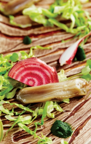 DUCK TONGUE, WITH BABY LETTUCE, SPROUTS AND PINE NEEDLE GEL