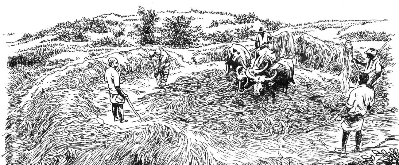 Threshing Floor (Kamatha)