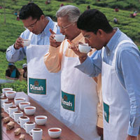 The Aroma of Ceylon Tea