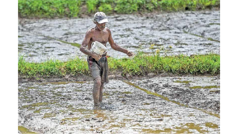 Last week, Sri Lankan President Gotabaya Rajapaksa set up a Presidential Task Force for Green...