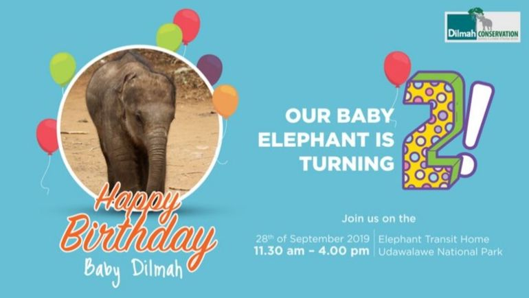 Happy 2nd Birthday Baby Dilmah