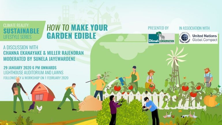 Sustainable Lifestyles Series:How to Make your Garden Edible