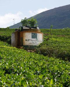 MJF Charitable Foundation - Providing clean ...