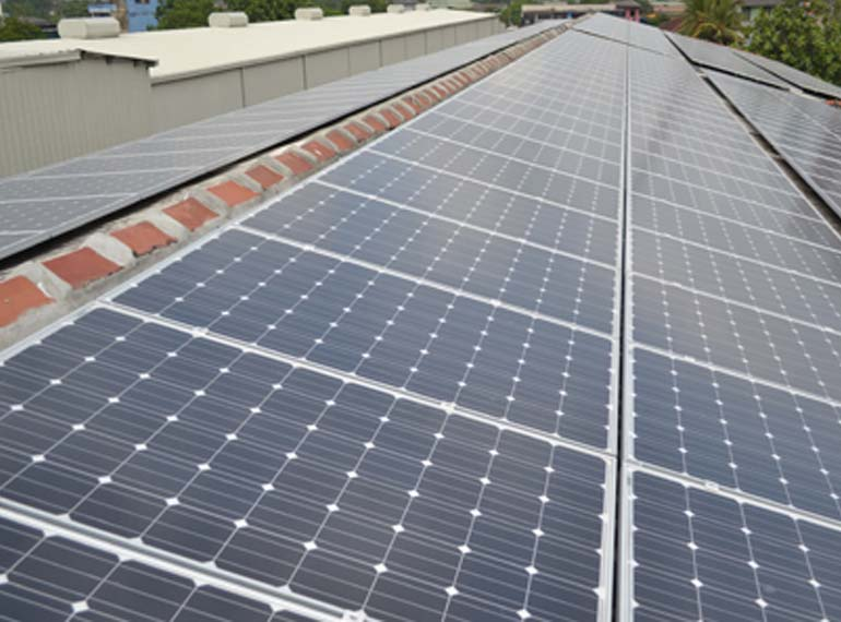 Dilmah tea establishes largest privately held solar power plant in Sri Lanka