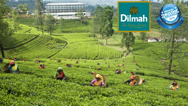Dilmah is voted by New Zealand as...