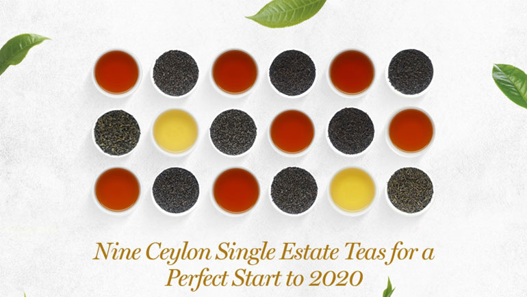 Perfect Teas for a Perfect Year : Nine Single Estate Teas for 2020