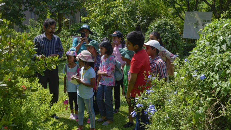 "Dilmah Conservation organized a fascinating educational workshop, the ""Festival of Trees"" for the Funday Times..."