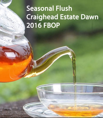 Seasonal Flush 2016 Craighead Estate Dawn