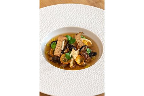 A Celebration of Mushroom & Tea
