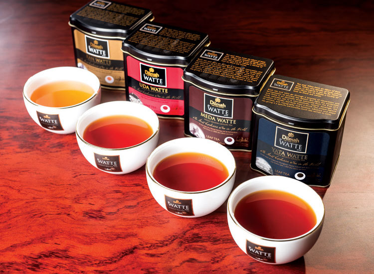 Dilmah Watte Boutique Tea